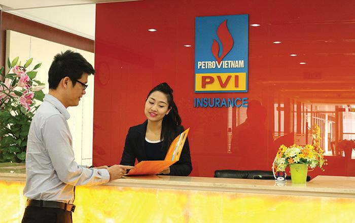 logo PVI