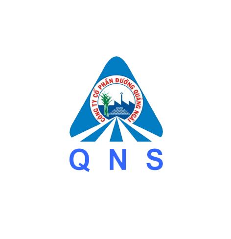 logo QNS