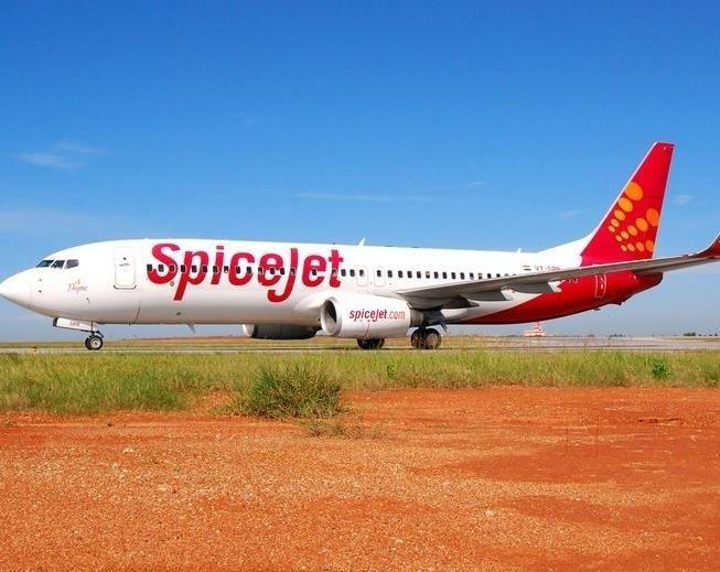 logo SpiceJet Airlines